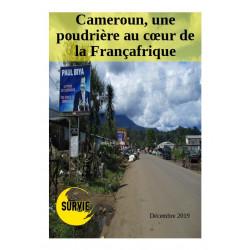 Cameroun, une poudrière au...
