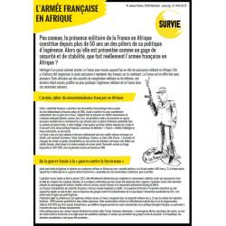 4 Pages Armée Française en...